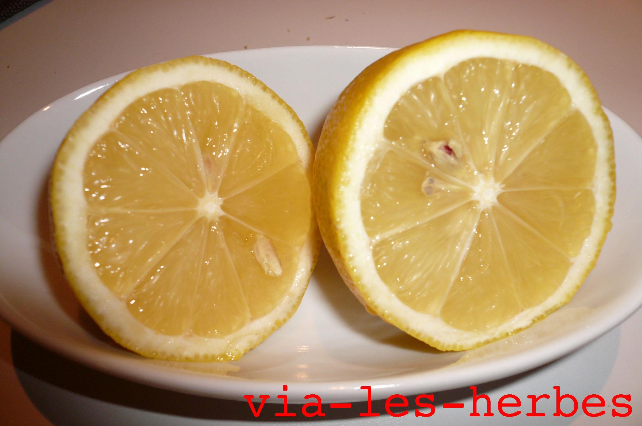 Lhuile de thé du psoriasis