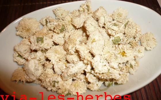 Anti inflammatoire via les herbes - Anti herbe puissant ...