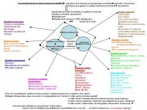 diagramme du stress